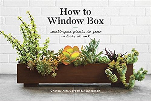 how to windowbox